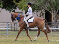 Molly Best from Rylstone Pony Club in Zone 6 was awarded the 13 & Under 15 years Showriding Age Champion riding her horse Lawlington Park Rendition. Photo: Rodneys Photography
