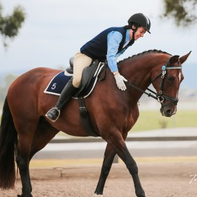 Olivia-Kait Gallegos from Bendemeer Pony Club in Zone 5 claimed the Dressage Associate Reserve Champion award. Photo: Rodneys Photography