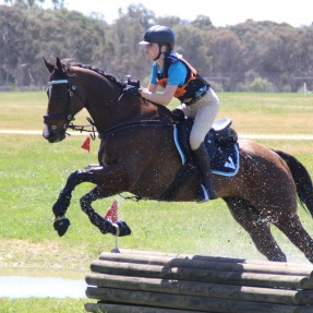 The Albury Wodonga Equestrian Centre was the perfect venue for the 2018 Championships with excellent facilities and lush green grass. Photo: Zam Photography