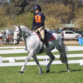The One Day Event Championship included Dressage, Cross Country and Showjumping phases. Photo: Zam Photography