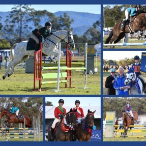 State showjumping