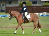 Holly Jacobson riding Brampton Park Royal Command. Photo Courtesy of Xpoze Photography.