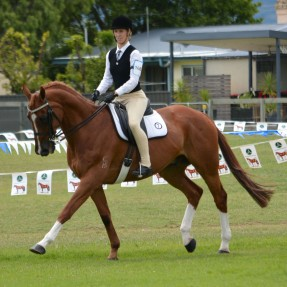 15 and under 17 years age group rider Victoria Wicks riding Precious Wood. Photo Courtesy of Xpoze Photography
