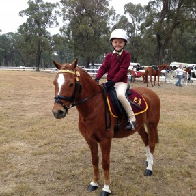 7 year old Ella Fin from The Oaks Pony Club with her pony 'Rory' at The Vines Pony Club Showriding 2014