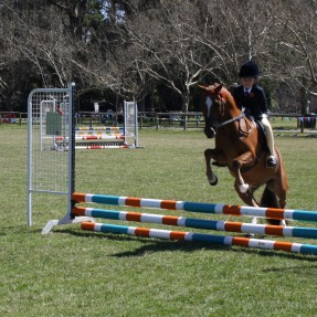 Ella Fin and pony 'Rory' competing at the Chevalier Gymkhana in the 45cm Showjumping