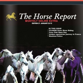 The Horse Report January Issue