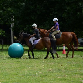 Henry and Edward Waters have a go at Horse Soccer