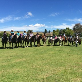 Snowy river pony club