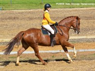 Sally Groat from Griffith Pony Club has been selected to represent NSW in the Junior Dressage and Junior Eventing
