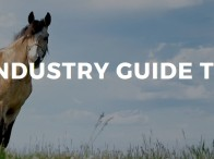Equine industry guide to safety
