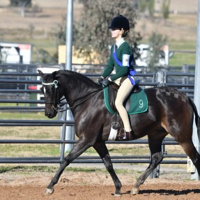 Zone 9's Mackenzie Peterkin won the class for Pony Club Rider 13 & under 15 years and finished the State Showriding Championships in 3rd place overall. Photo: Julie Wilson