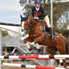 Anastasia Haling from Kootingal achieved great results in the 13 & under 15 years B Grade Showjumping Championships Photo: Julie Wilson